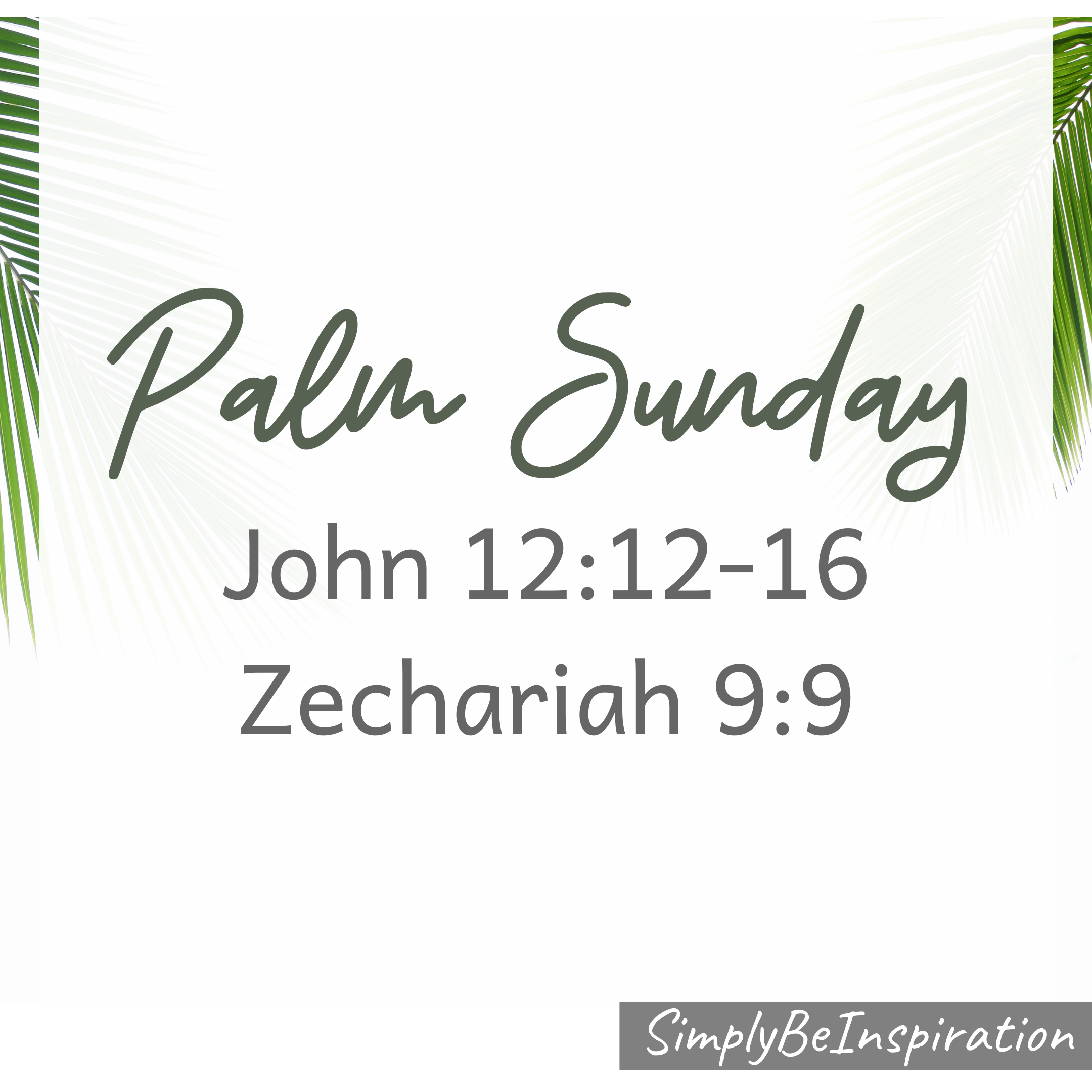 Palm Sunday John 12:12-16; Zechariah 9:9