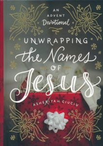 The Names Of Jesus Devotional Book